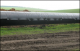 Лист Скальный СЛП-122 5*3930*2400 (22,20 кг) рулон